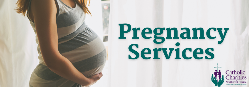Pregnancy Services website header (2)